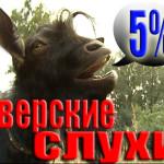 5% тверских слухов №5