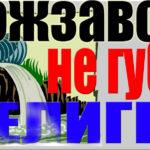 «Кожзавод, не губи Селигер!» - акция вышла в центральные СМИ
