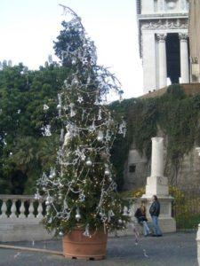 unusual_christmas_trees_14