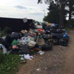 На главу Титова могут завести уголовное дело по мусору