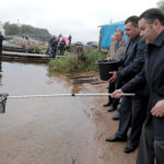 В озеро Селигер  выпущено почти 9 тысяч мальков стерляди