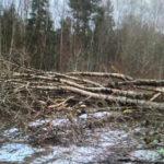 В Осташковском районе восстановили электроснабжение
